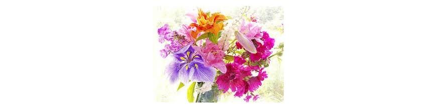 گلی (Floral)