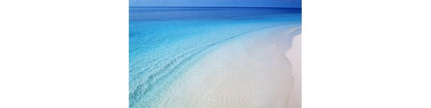 آبی (Watery)